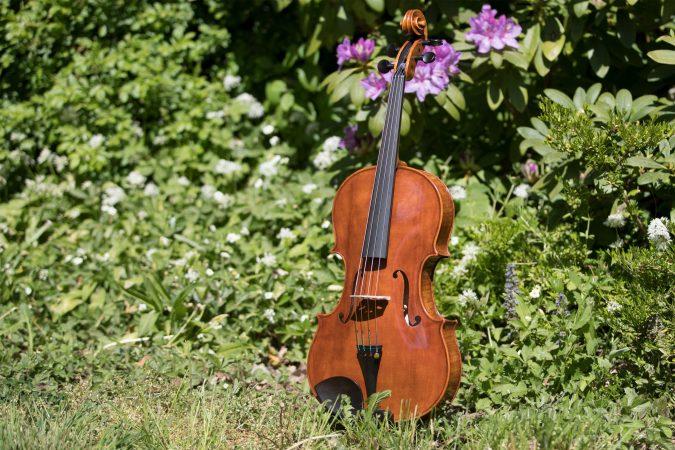 Seidl Viola
