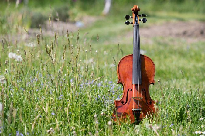 Guadagnini Violine