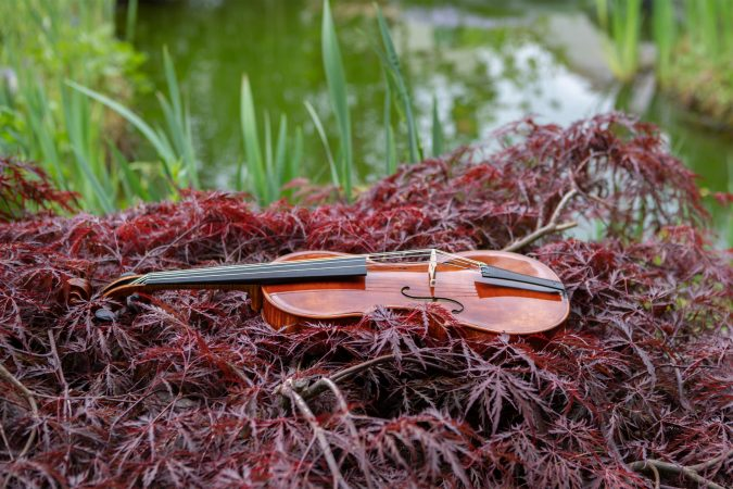 hist. Stradivari Violine