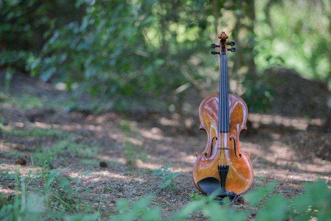 Guadagnini Viola